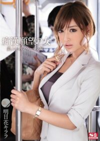 SNIS-191 Flower Girl Killala Beautiful Career Woman Knitting Tomorrow Molestation Of Desire